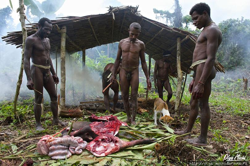 Порно аборигены племена117