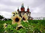 В настоящее время в монастыре более-менее восстановлен лишь Храм в честь иконы Богородицы «Всех скорбящих радость», где покоятся останки святого Далмата