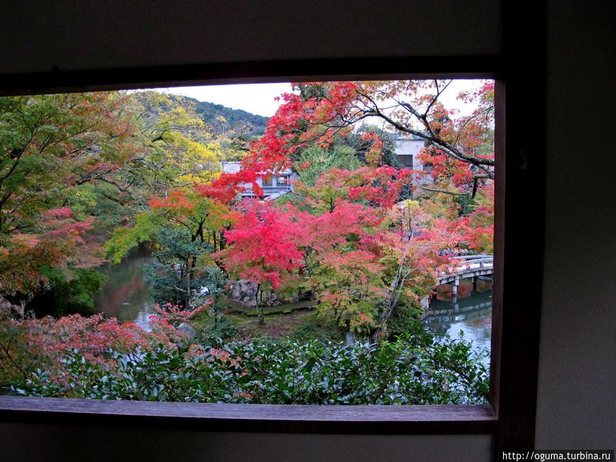 Картинный вид на осень в павильоне храма Эйкандо Япония