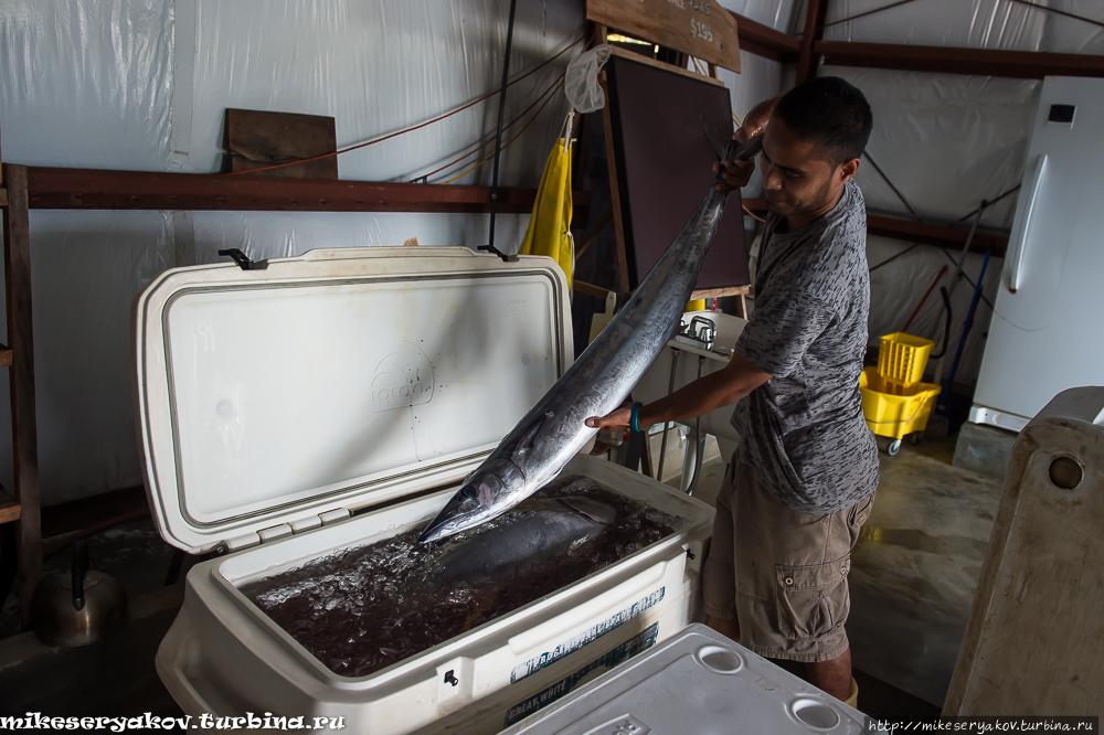 Рыбалка на острове Яп Штат Яп, Микронезия