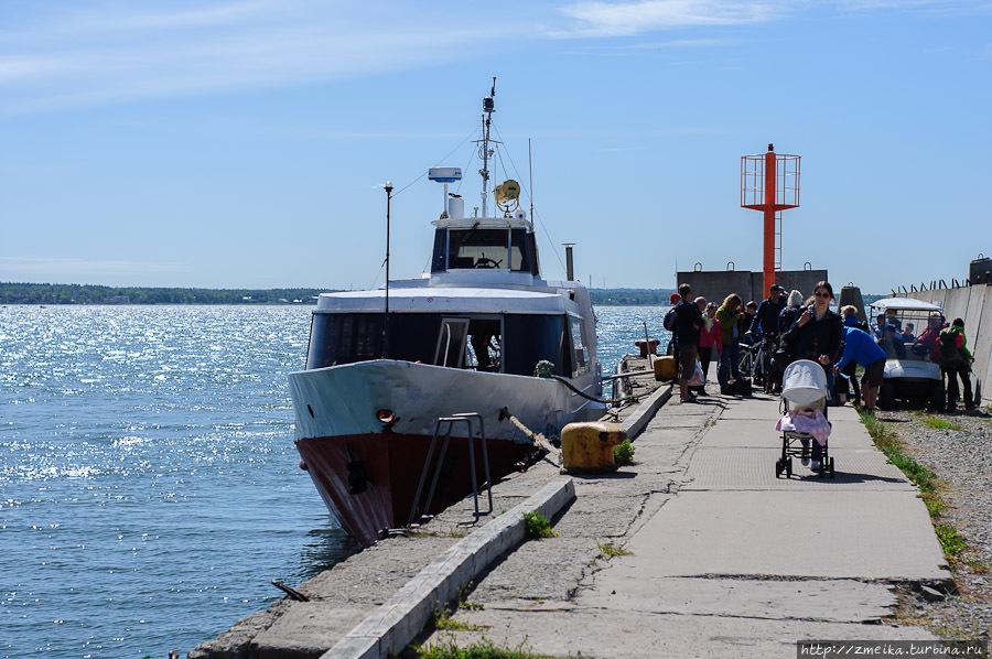 Порт на Аэгне и Веста.