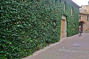 А вот и тот дом, где было вырезано окно, он абсолютно весь зарос растениями. Зеленый дом — Casa Verde