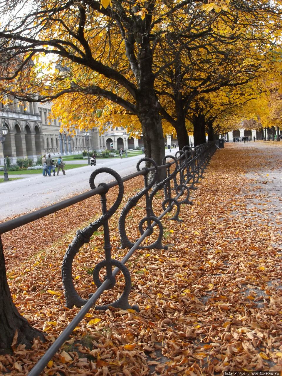 когда золотая осень в мюнхене совете