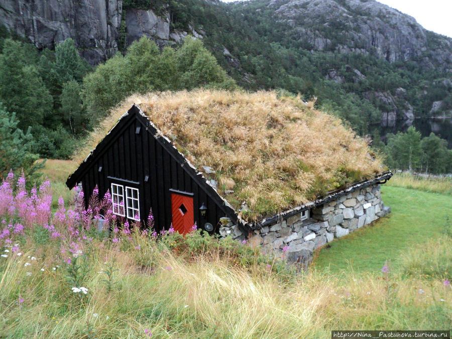 Покорение Прекестулена Прекестулен (Кафедра проповедника), Норвегия