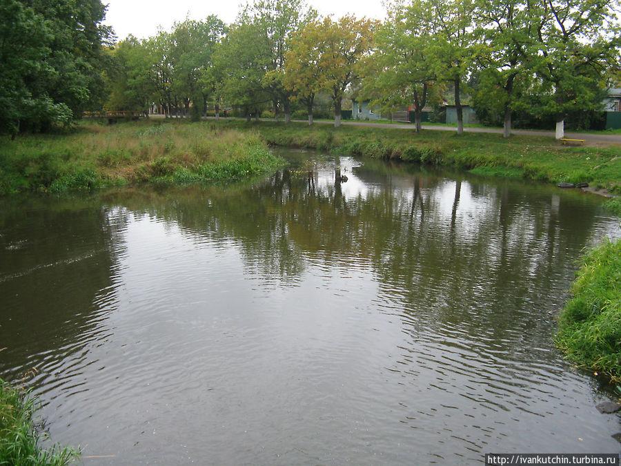 Река Гдовка