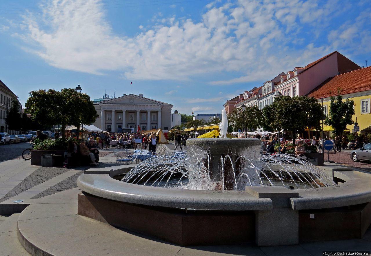 На Ратушной площади Вильнюса