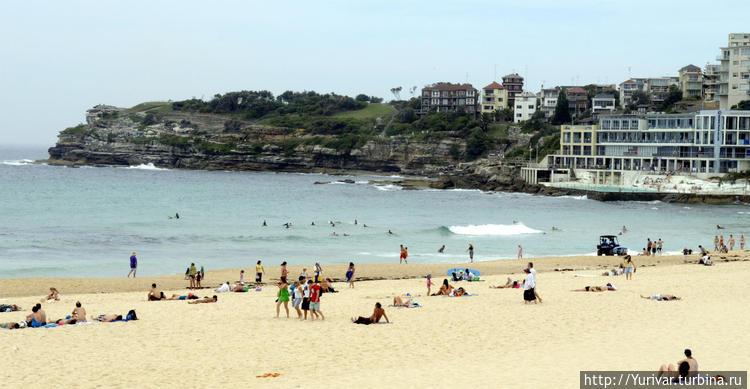 Правая часть пляжа Coogee