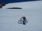 Солнце на спицах, синева над головой...   зай-зай-зай. Таких велопоходов сына еще не видел.
