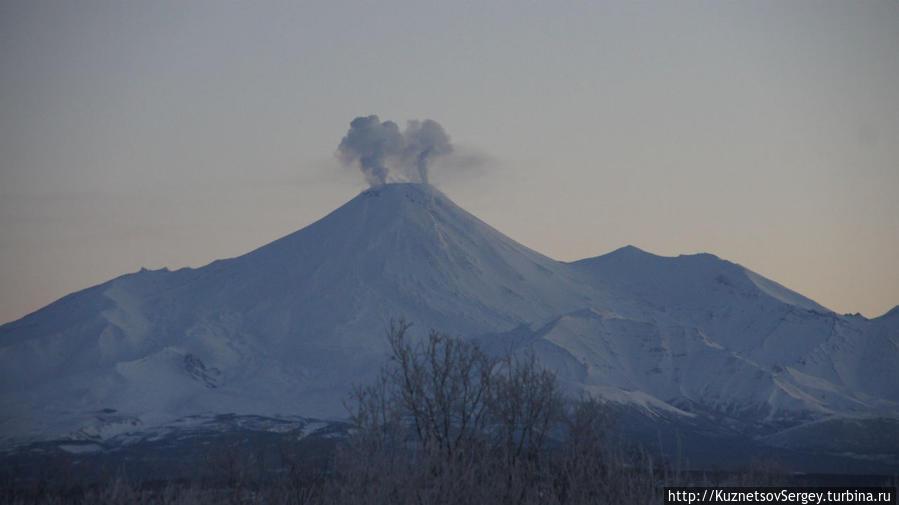 Авачинский вулкан от Елизово