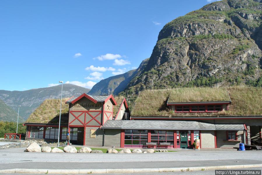 На выезде из Лаердальского тоннеля —  40-минутная остановка в Хобаккене