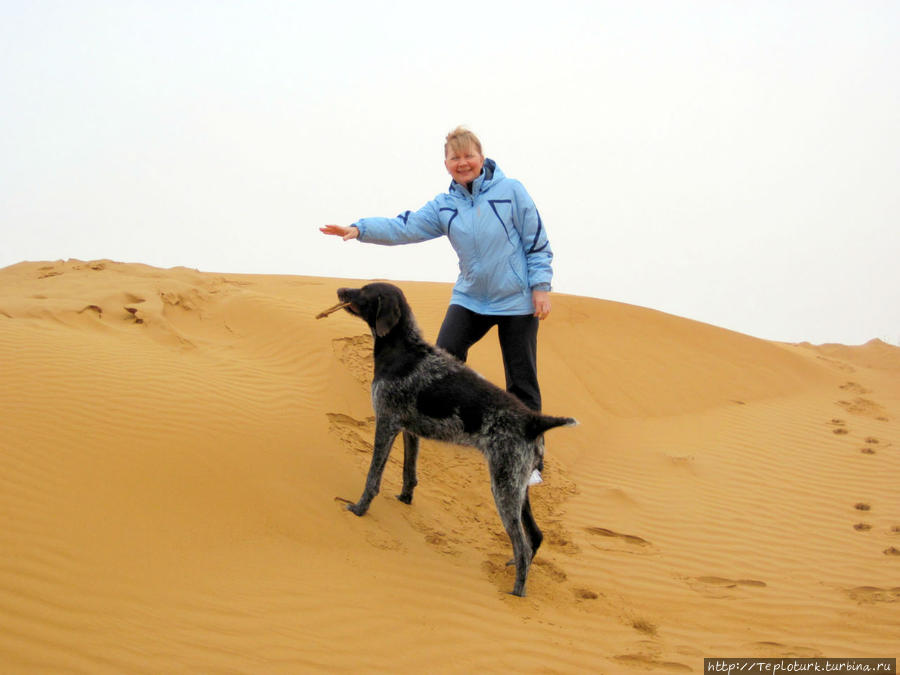 Песчаные барханы Калмыкии