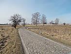 Старая немецкая дорога