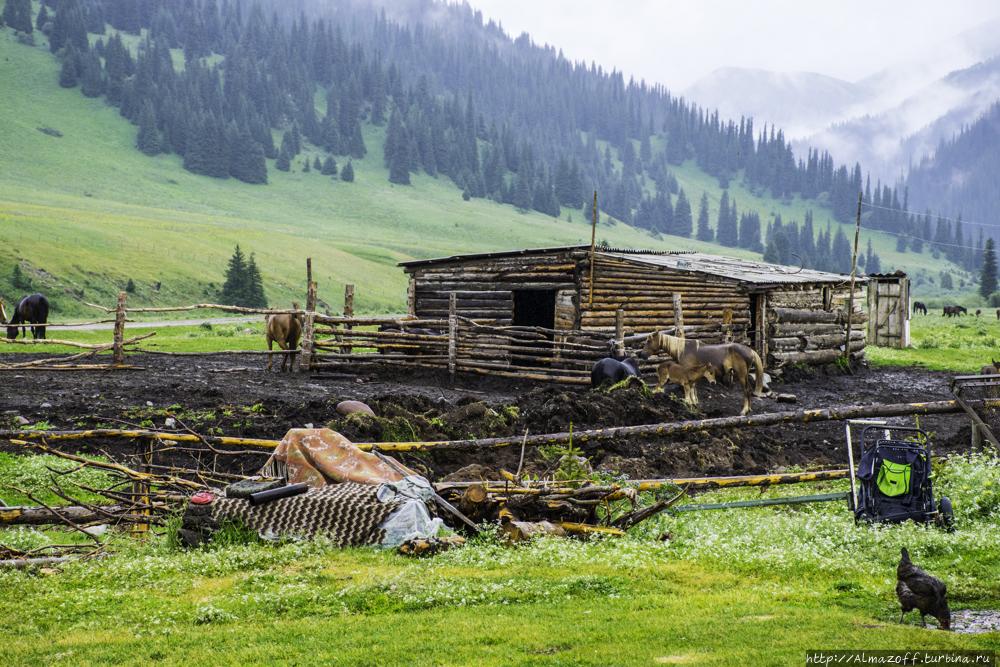 Каркара — вдохновение номада Каркара, Казахстан