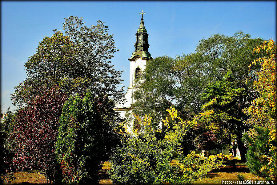 Замок Брунсвиков в Мартонвашаре Мартонвашар, Венгрия