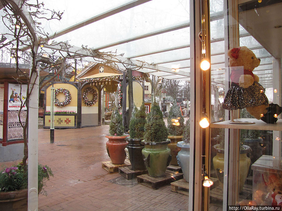 Вид из магазина в парк