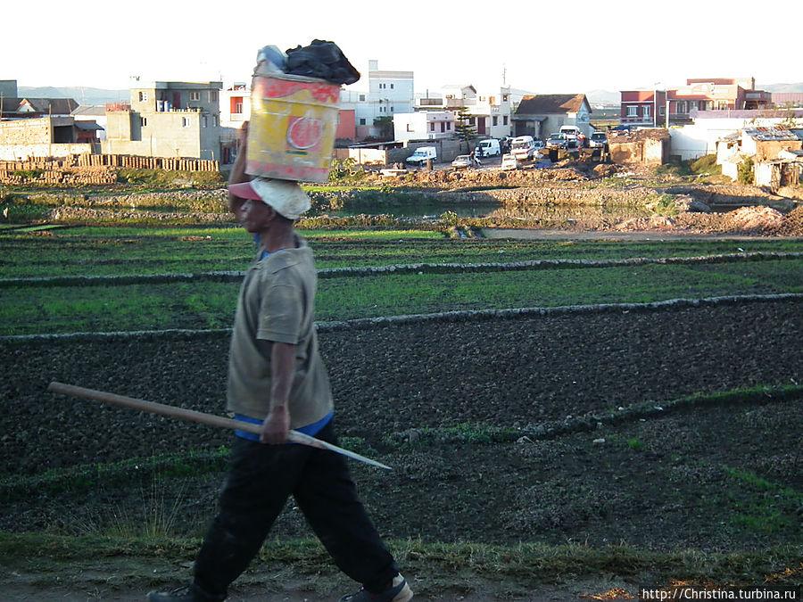 Малагаси (как и большинство африканцев) носят ношу на головах. Как мужчины так и женщины. Антананариву, Мадагаскар
