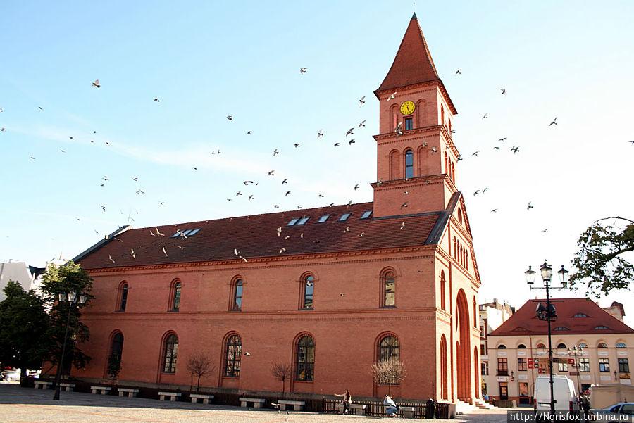 Справа от входа в церковь находится ресторан, в который ходить ни в коем случае не надо:(( Торунь, Польша