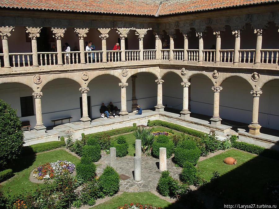 Колонны нижней галереи соединены арками и украшены очень скромно — 23 медальонами, на 15 из которых изображены мужские бюсты и на 8 — женские. Одежда, причёска, выражение лиц переданы очень детально. Кто они? Никто не знает. Саламанка, Испания