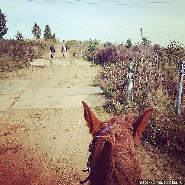 И ещё один вид с лошади.
