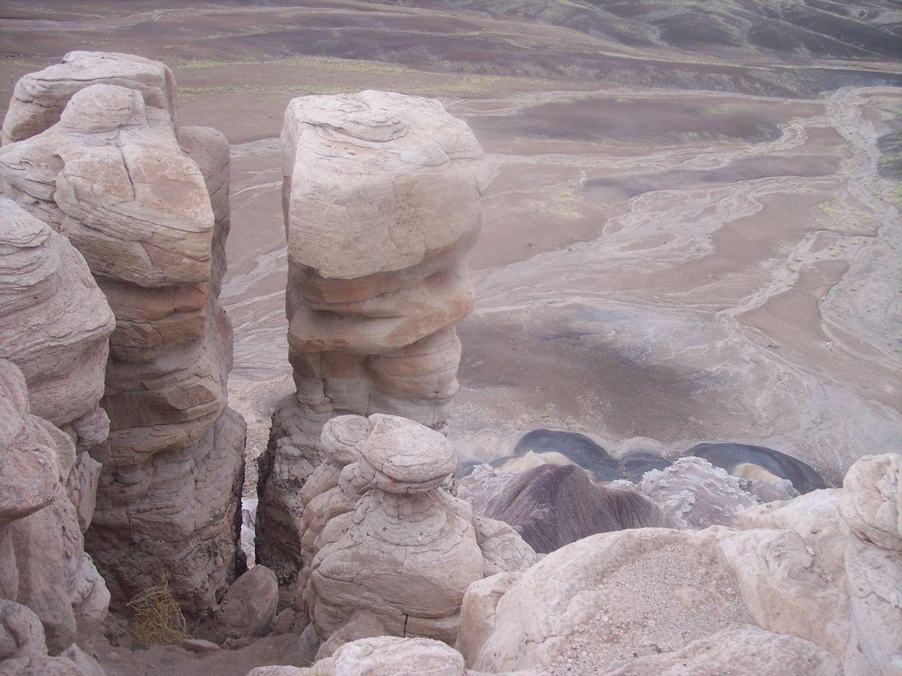 Окаменелый лес в Раскрашенной пустыне. Национальный парк Петрифайд-Форест, Соединенные Штаты Америки