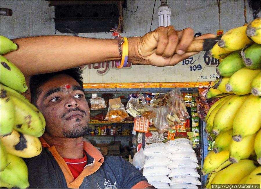 Скромное обаяние ланкийских мужчин Тринкомали, Шри-Ланка
