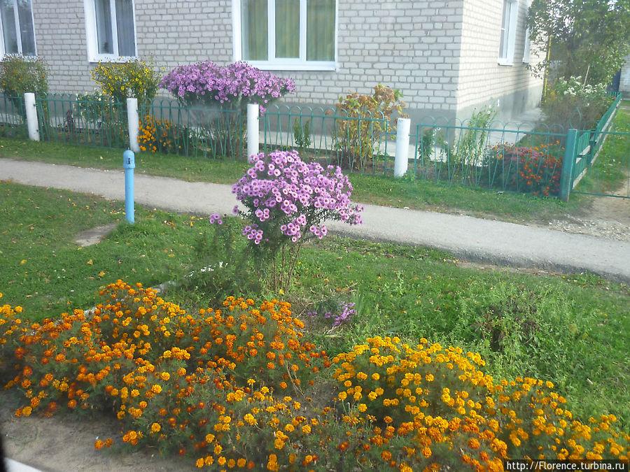 Райцентр Жиздра Калужской области встречает нас ухоженными палисадниками