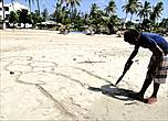 Трудно приходится мужчинам на Шри-Ланке. До сих пор сохраняется традиция, что жениться может лишь тот, кто нашел невесту с приданым. Но не всякая ведь за голодранца пойдет. Так что многим лишь остается  рисовать  свою мечту на песке. Не случайно у тамилов сложилась поговорка — Жены нет — и ведьму обнимешь. От того, найдешь ли ты здесь жену, зависит вся дальнейшая жизнь и твоя старость...