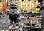 Стражники храма