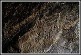 Изображения козлов. III—II тысячелетий до н. э.