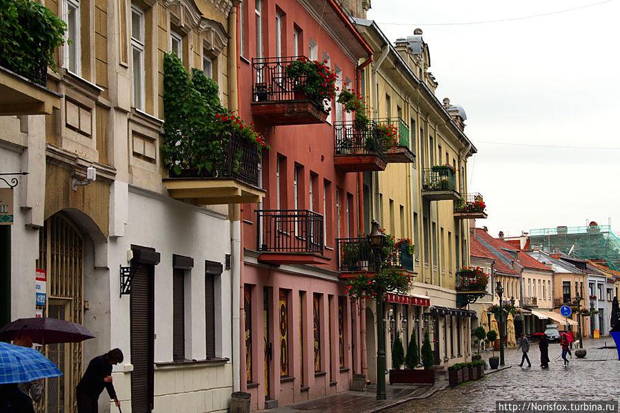 Идем по улице Vilnius gatve Каунас, Литва