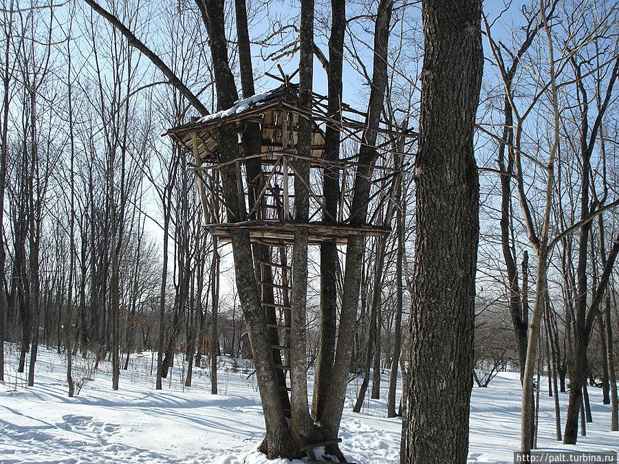 Дизайнерские штучки в лесу