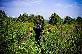 Шли мы через заросли, знакомых, но сильно гипертрофированных растений, по еле различимой тропе. Поляну крапивы, сменяла поляна мяты, затем борщевик высотой больше человеческого роста, папоротники каких-то не вероятных размеров, лопухи под которыми легко может спрятаться пара взрослых человек.