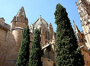 Старый Кафедральный собор Саламанки