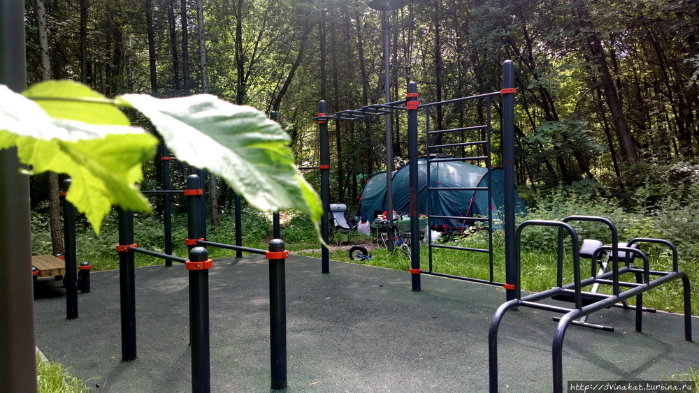 Кемпинг в парке