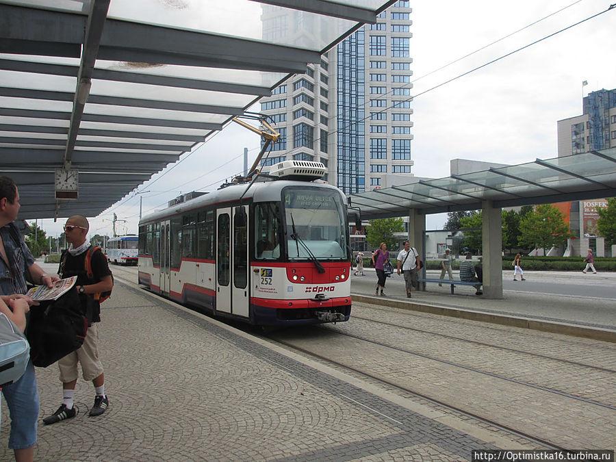 Около вокзала Оломоуца — остановка трамваев. Удобно доехать в любой район города.