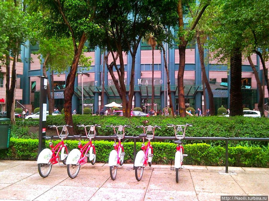 Городские велосипеды у входа. За небольшую годовую плату можно брать велосипеды на любой стоянке в центре и возвращать на другую стоянку.