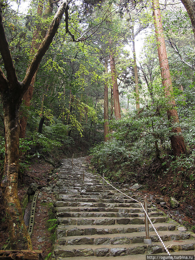 подъём к верхним храмам. Примерно час надо подыматься по таким склонам на верх. Киото, Япония