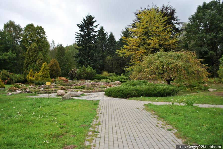 Ботанический сад. Чтобы нормально. осмысленно осмотреть, нужен как минимум день. Вход около 70 руб (оранжерея отдельно)
