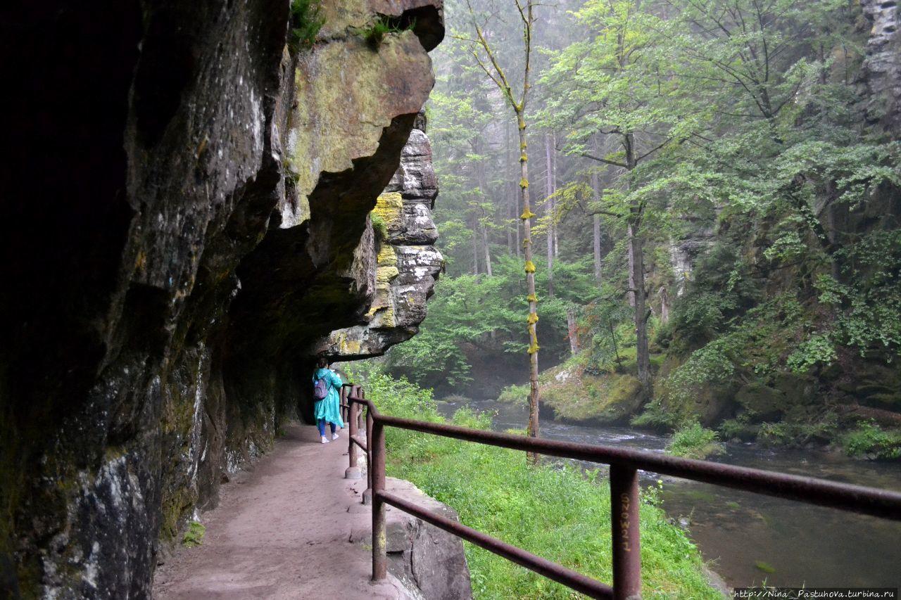 В Национальном парке Чешская Швейцария