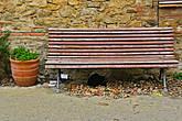 Второго местного жителя после кузнеца, мы обнаружили спящим под скамейкой