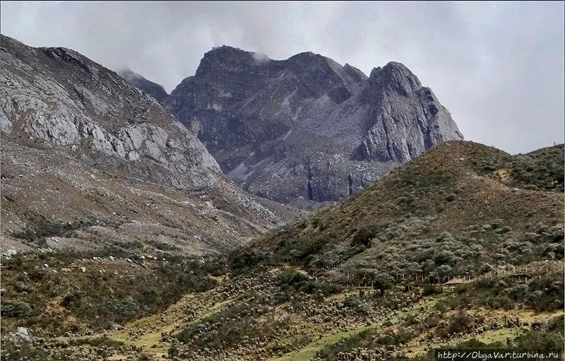 Ориентиром служит вот эта гора: скала Campanilla Nеgro — «Черный Колокол» Эль-Кокуй Национальный Парк, Колумбия
