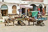 Повозки, запряженные ослами, — самый распространенный транспорт этой части страны... *