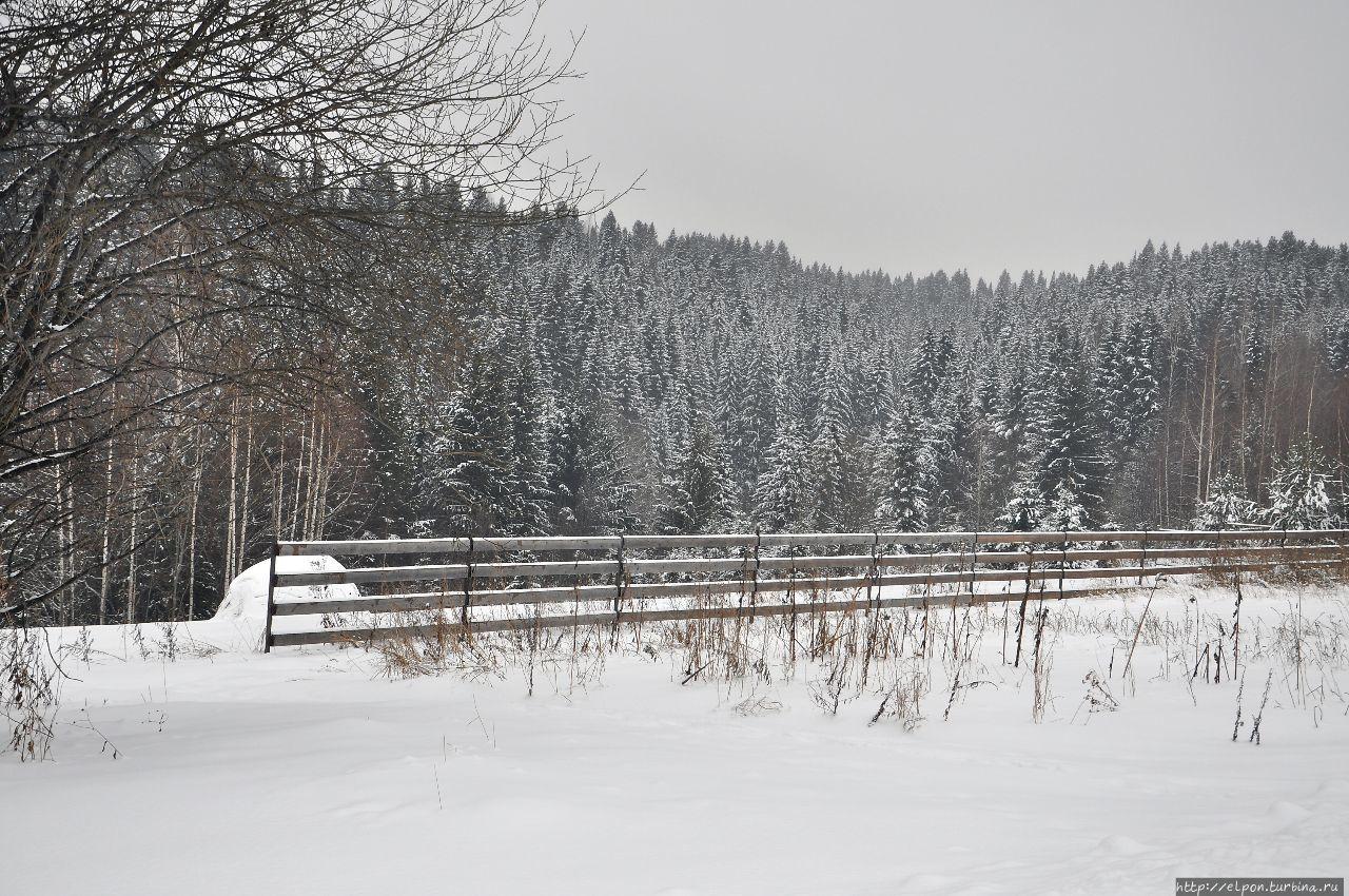 Зима Пермский край, Россия