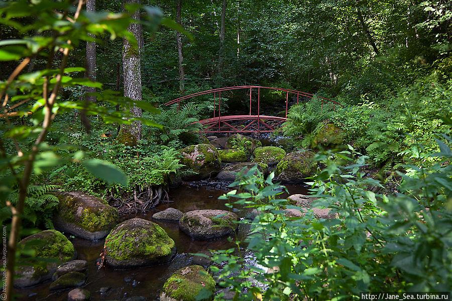 речка Кунесть с одним из двух мостиков