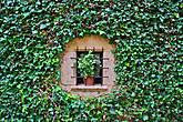 Я конечно не мог пройти мимо этого парадоксального окна. Стоило ли вырезать этот красивый круг, чтобы наглухо закрыть потом окно цветком? но видимо смысл окна совсем не в том чтобы смотреть через него на улицу или чтобы в помещение проникал свет...
