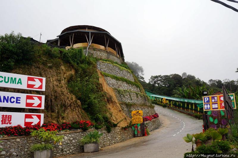 Так  красиво  начинается  дорога  на  плантацию  ВОН. Танах-Рата, Малайзия