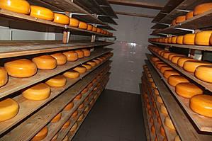 Два месяца сыр