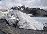 Ледяная лапа
