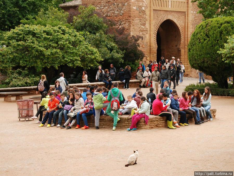 Альгамбра популярна и у испанских школьников Гранада, Испания