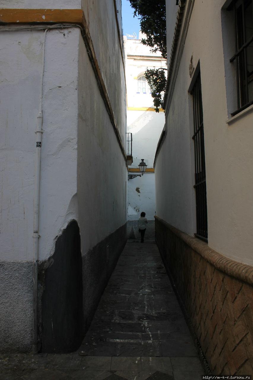 Девять мест, котрые стоит посмотреть в квартале Санта Крус Севилья, Испания